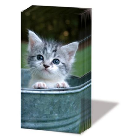 PPD.SNIFF050861 Sweet Kitty papírzsebkendő,10db-os
