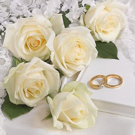 AMB.13314260 White Wedding papírszalvéta 33x33cm,20db-os