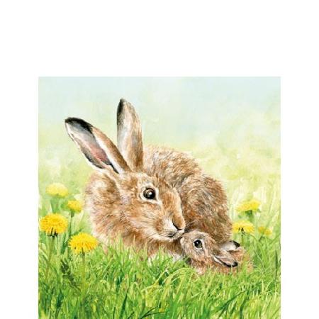 AMB.22514120 Hare Family papírszalvéta 25x25cm, 20db-os