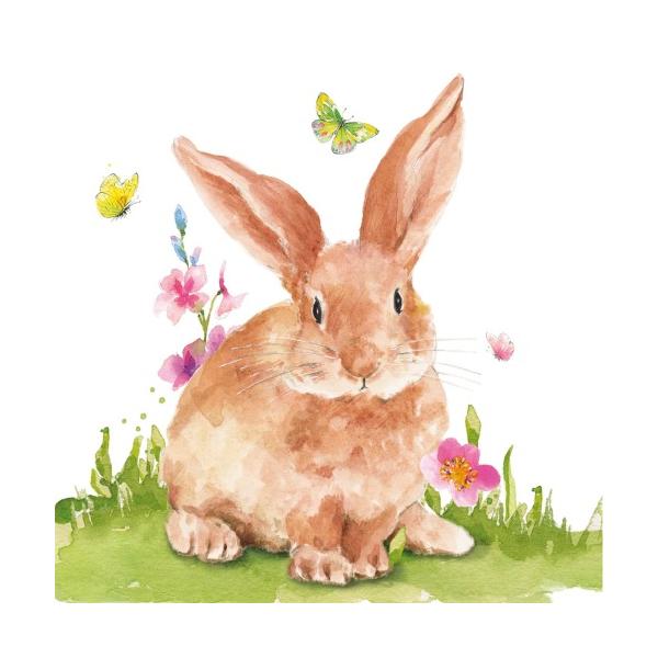 Mr.Rabbit papírszalvéta 25x25cm, 20db-os