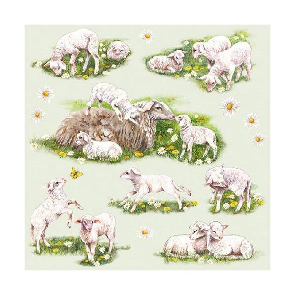 AMB.13312815 Spring with Lambs papírszalvéta 33x33cm,20db-os