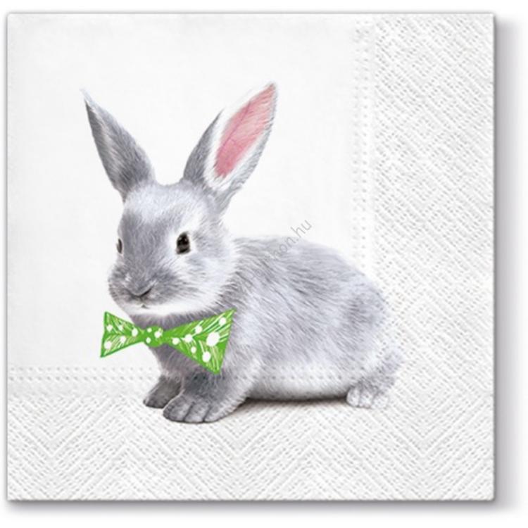 A.P.W.SDL054400 Ben Bunny papírszalvéta 33x33cm, 20db-os