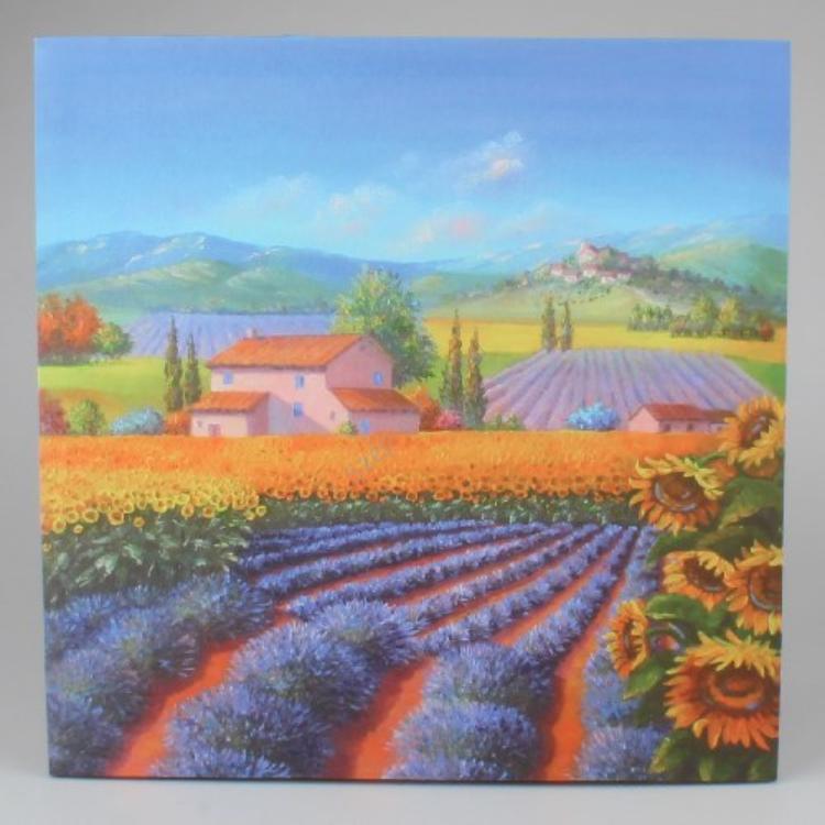 D.HLH16157 Kép 50x50cm,Provence táj
