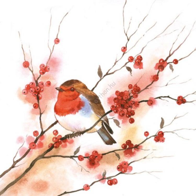 AMB.33304435 Birdy Robin papírszalvéta 33x33cm,20db-os