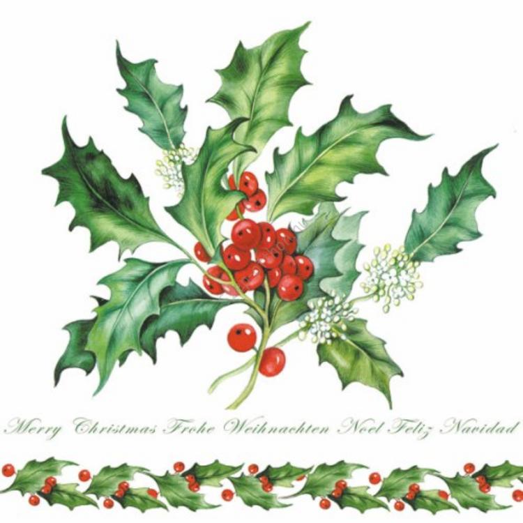 AMB.33304255 Holly Branch white papírszalvéta 33x33cm,20db-os