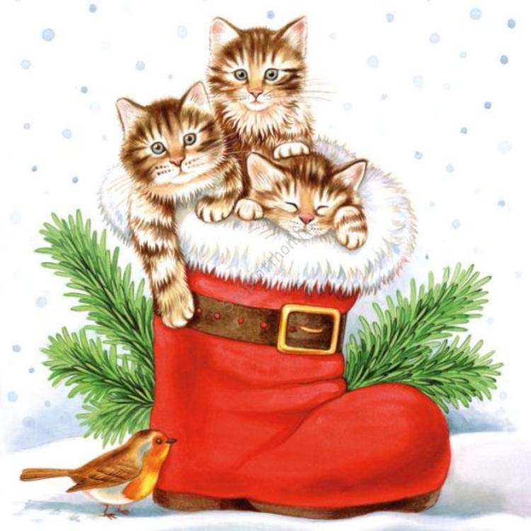 AMB.33304005 Christmas Kitties papírszalvéta 33x33cm,20db-os