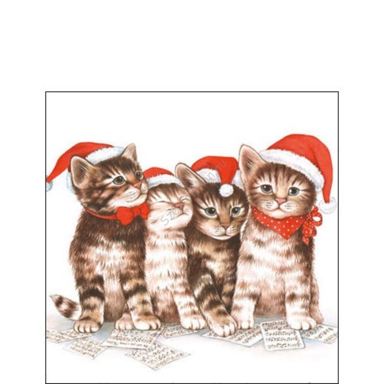 AMB.32504765 Singing Cats papírszalvéta 25x25cm,20db-os