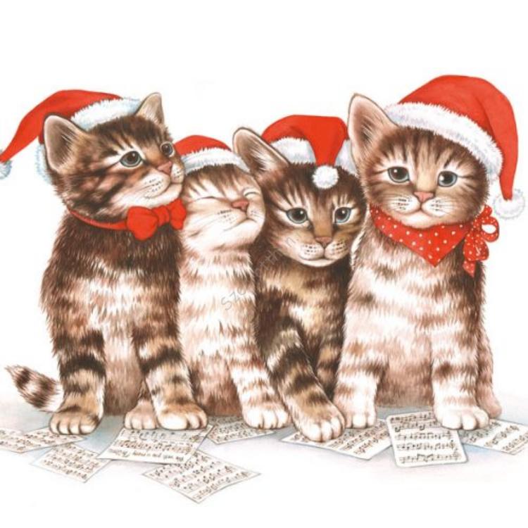 AMB.33304765 Singing Cats papírszalvéta 33x33cm,20db-os
