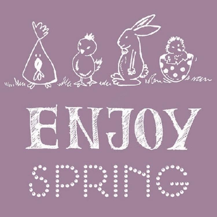 Enjoy Spring berry papírszalvéta 33x33cm,20db-os