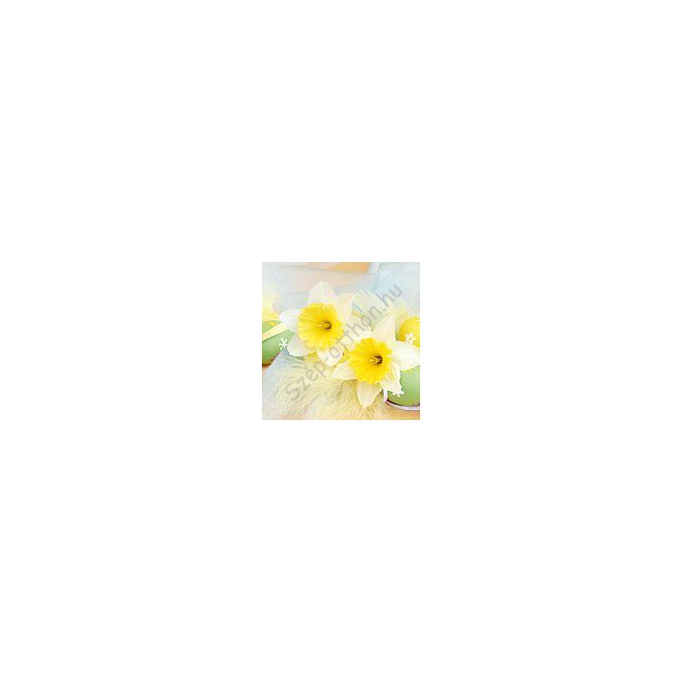 AMB.13306720 Daffodils papírszalvéta 33x33cm,20db-os