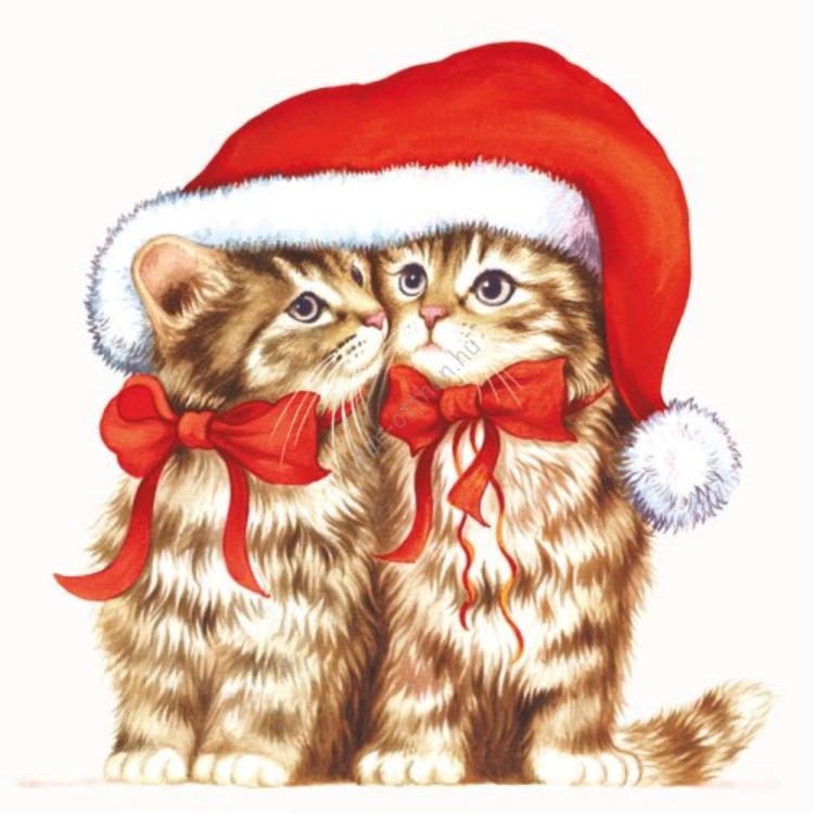 AMB.33303710 Dressed Kitten papírszalvéta 33x33cm,20db-os