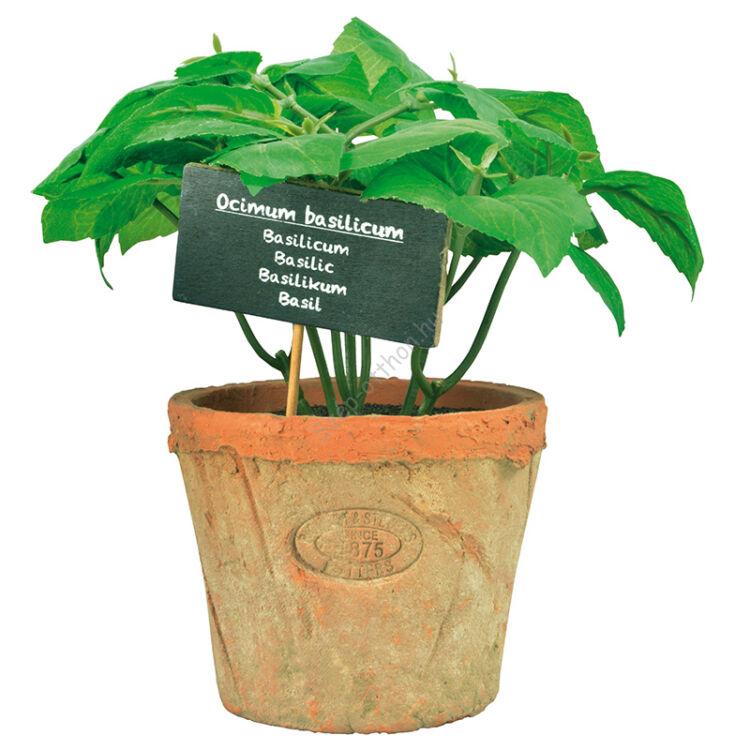 Műnövény dekoráció, bazsalikom, nagy