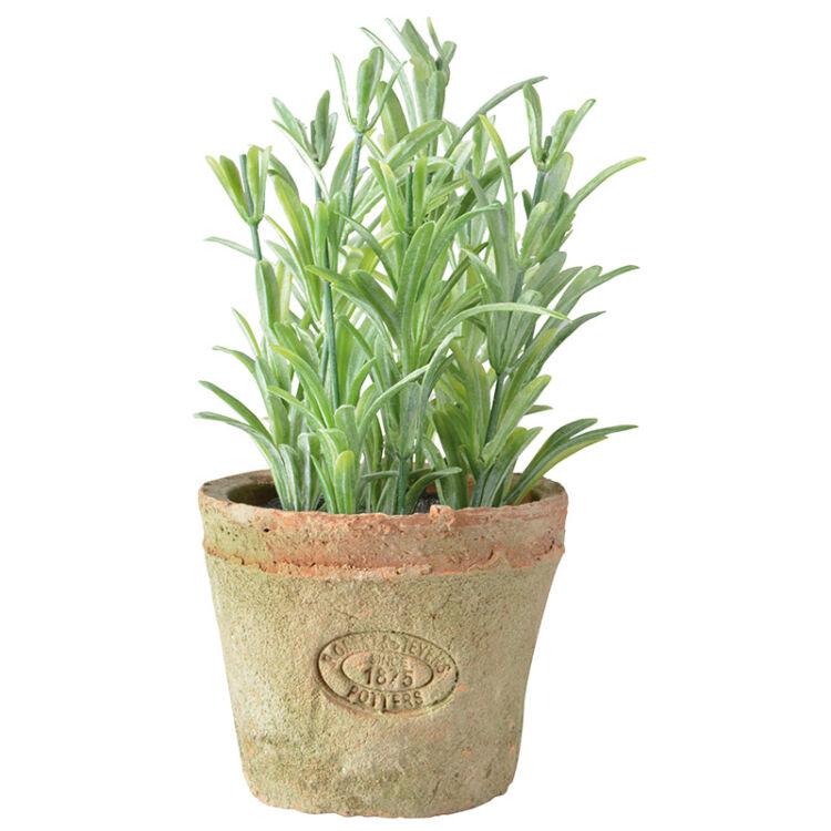 Műnövény dekoráció, rozmaring